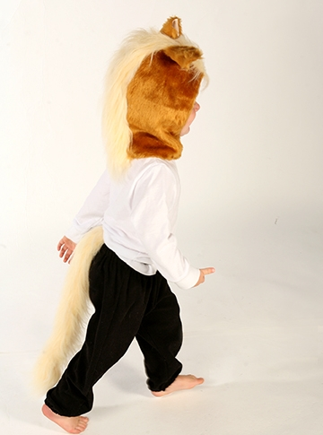 pony_large.jpg