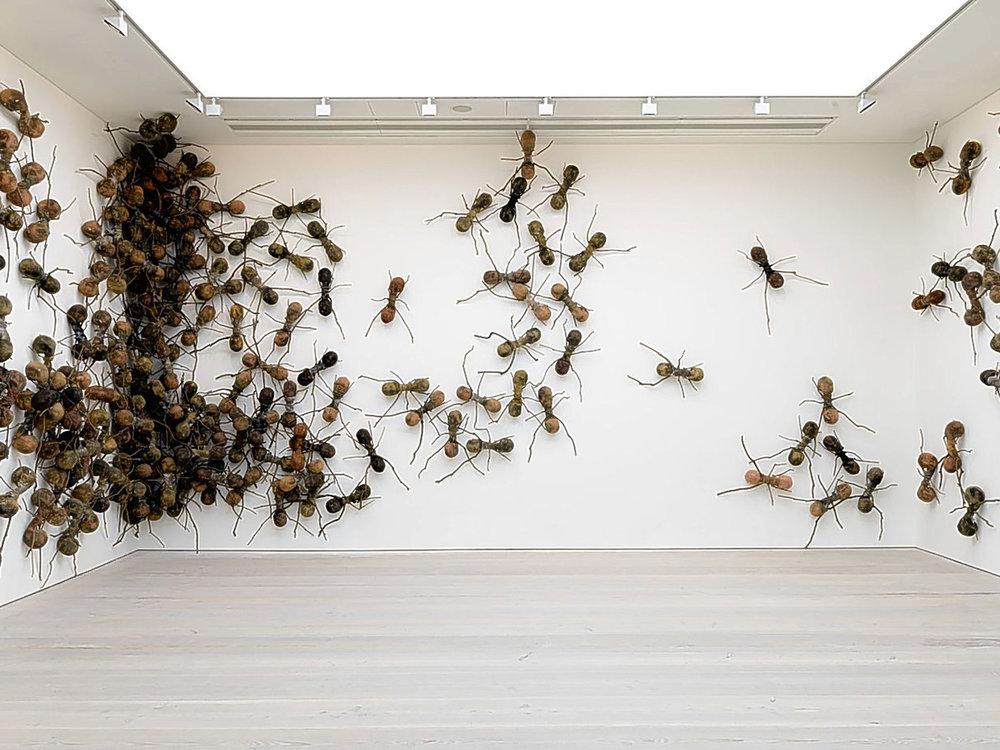 giant ants.jpg