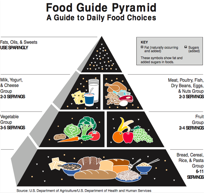 2003 USDA Food Pyramid
