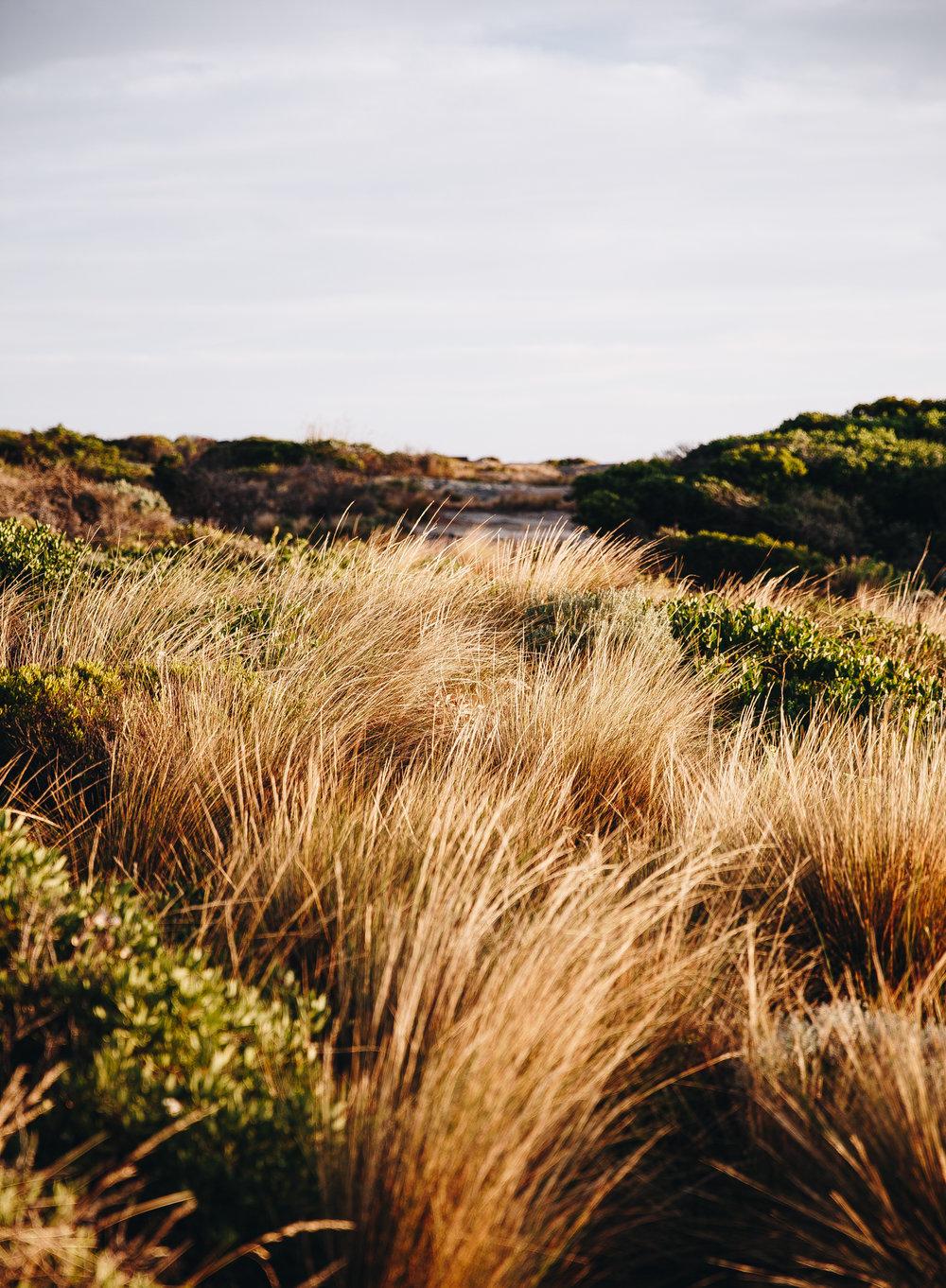 Flinders Island 6.jpg