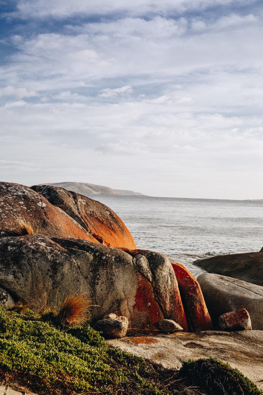 Flinders Island 8.jpg