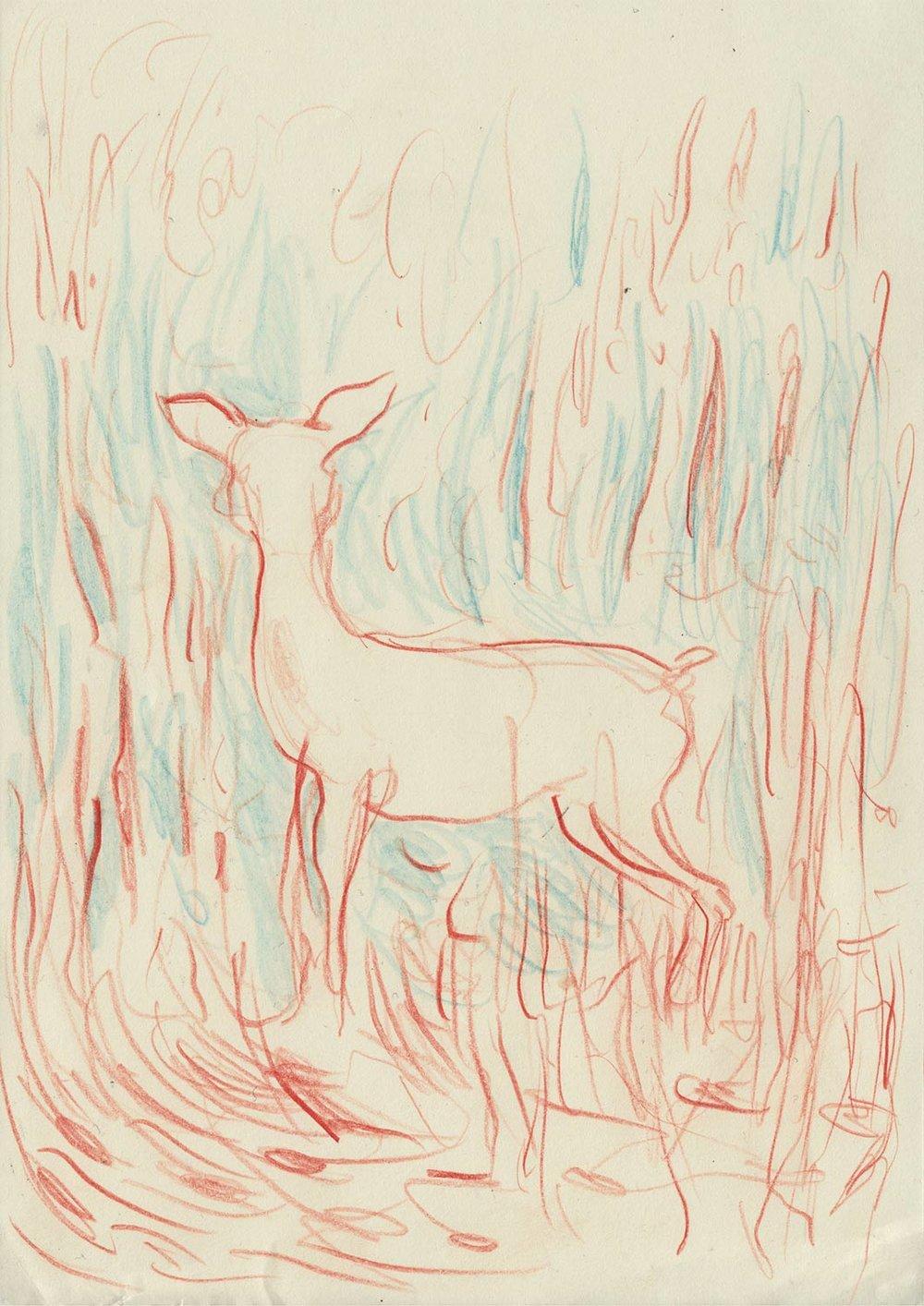bambi_A4.jpg