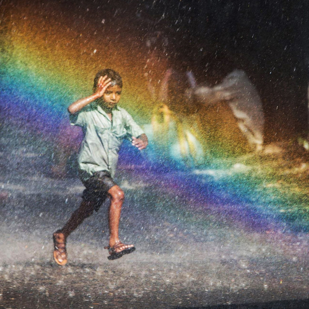 lion-rainbow_4311.jpg