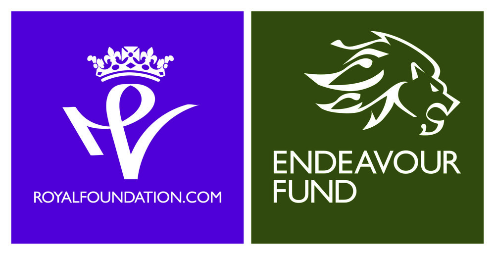 Copy of endeavour fund
