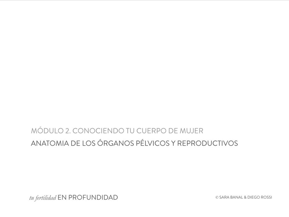 CURSO_ANATOMIA_portada.png