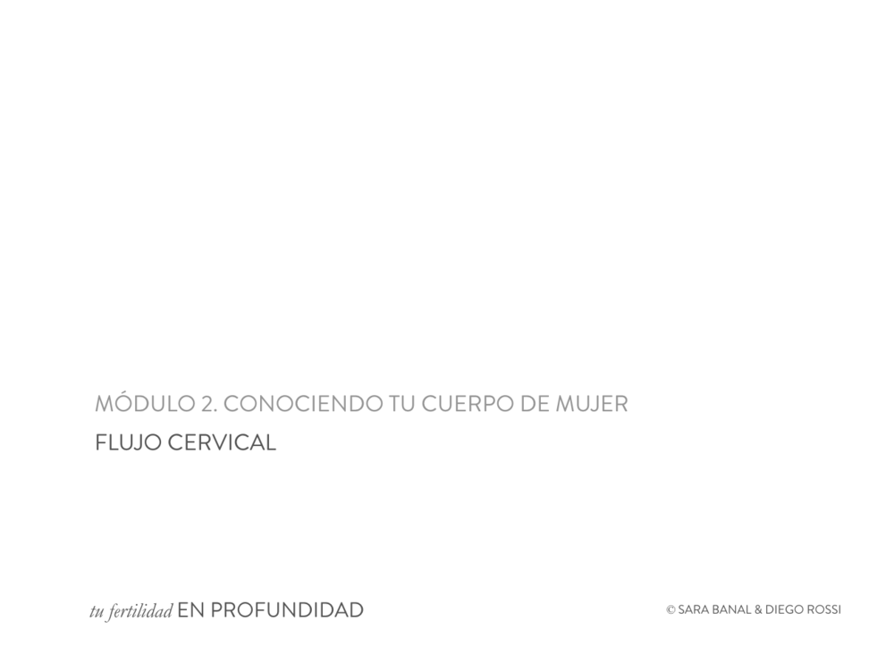 CURSO_Flujo_portada.png