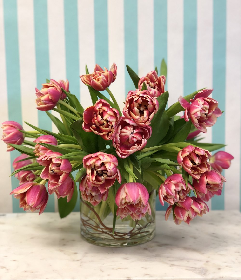 Dutch Double Tulip Arrangement- $95   30 Dutch double Tulips arranged in a 6x6 vase with curly willow. Colors may vary unless specified.