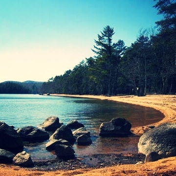 why we love it: large wooded sites; access to beautiful and clean lake water off of a sandy beach; lots of hiking and biking trails; child friendly yet quiet