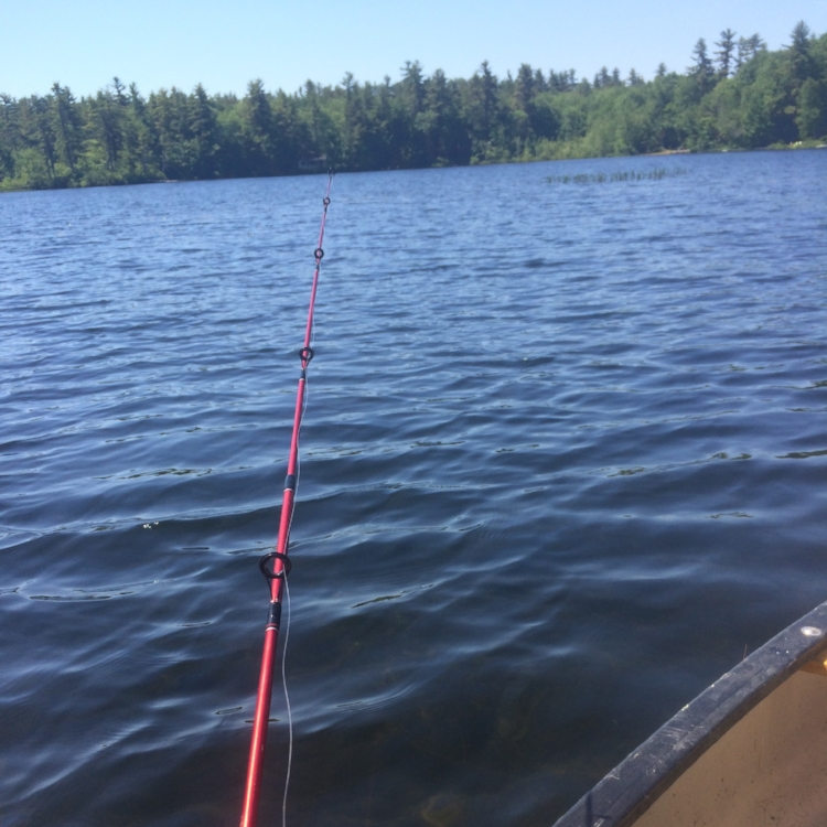 Maine fishing | maine canoe | maine glamping