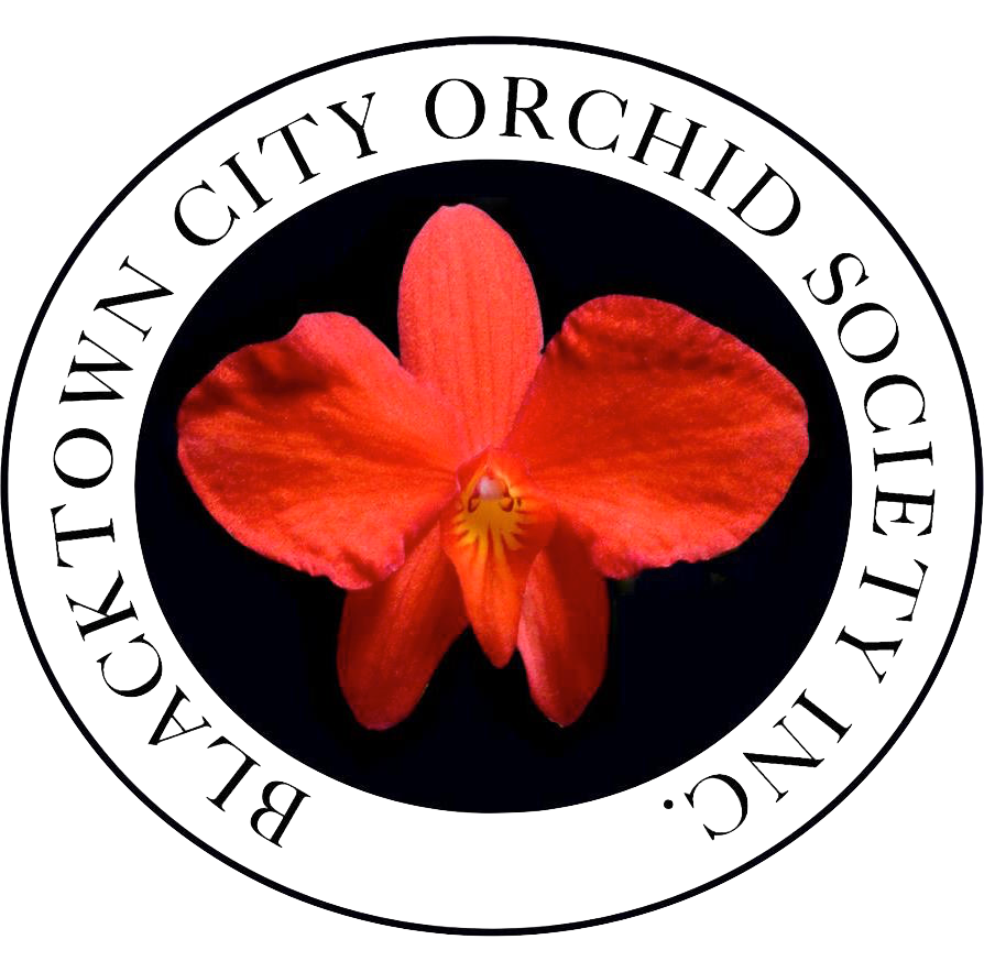 Blacktown City Orchid Society Inc.