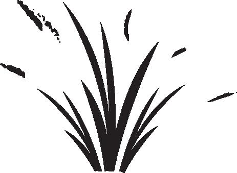 Grass-FedBeefBoneBroth_icon.png