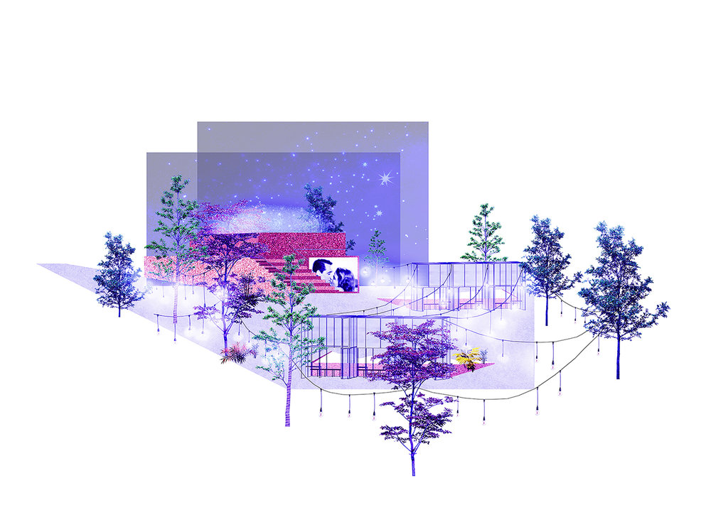 02_IMAGEN NOCHE CLARA.jpg
