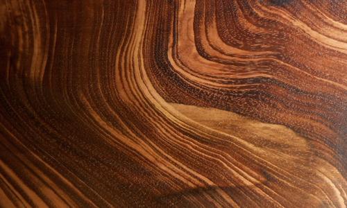 goncalo alves W011