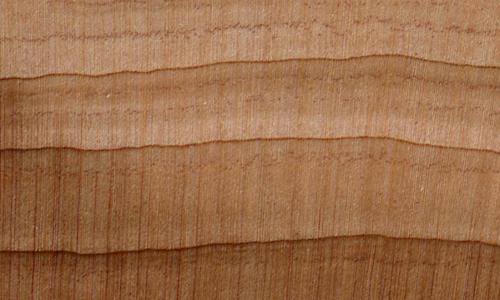 Red Cedar W017