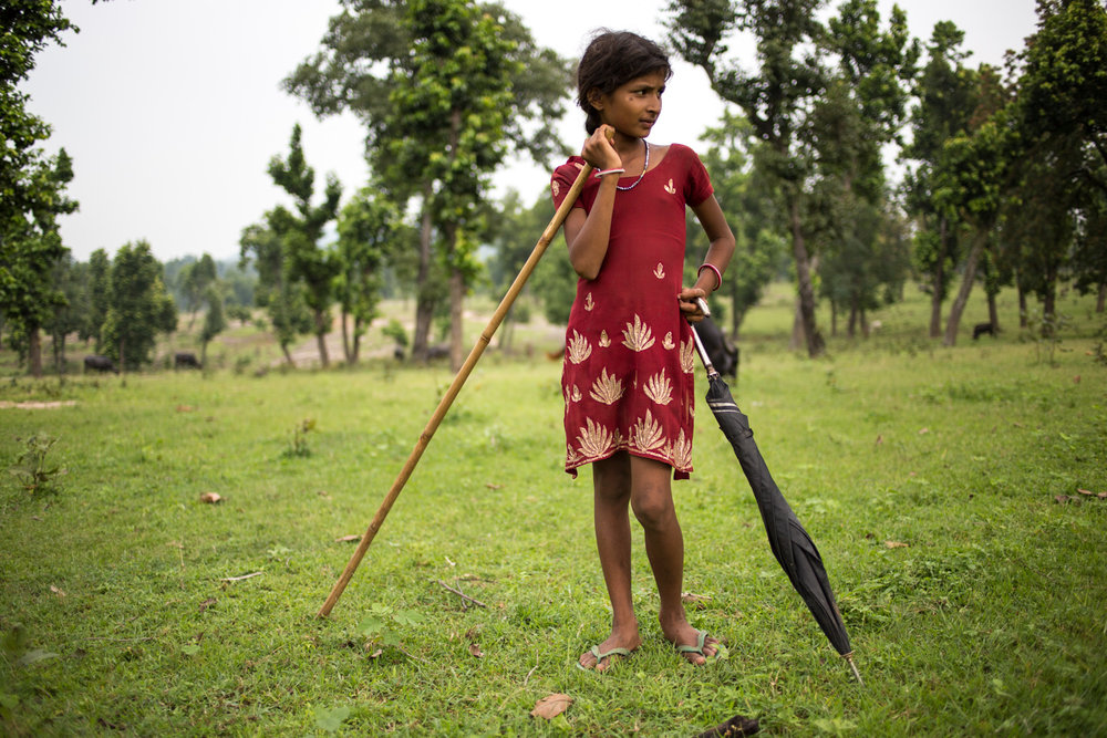 A young shepherdess at the village of Pedtali. Educational facilities unfortunately is not accessible to everyone in these remote corners of Mahan forests. Schools are few and far between.