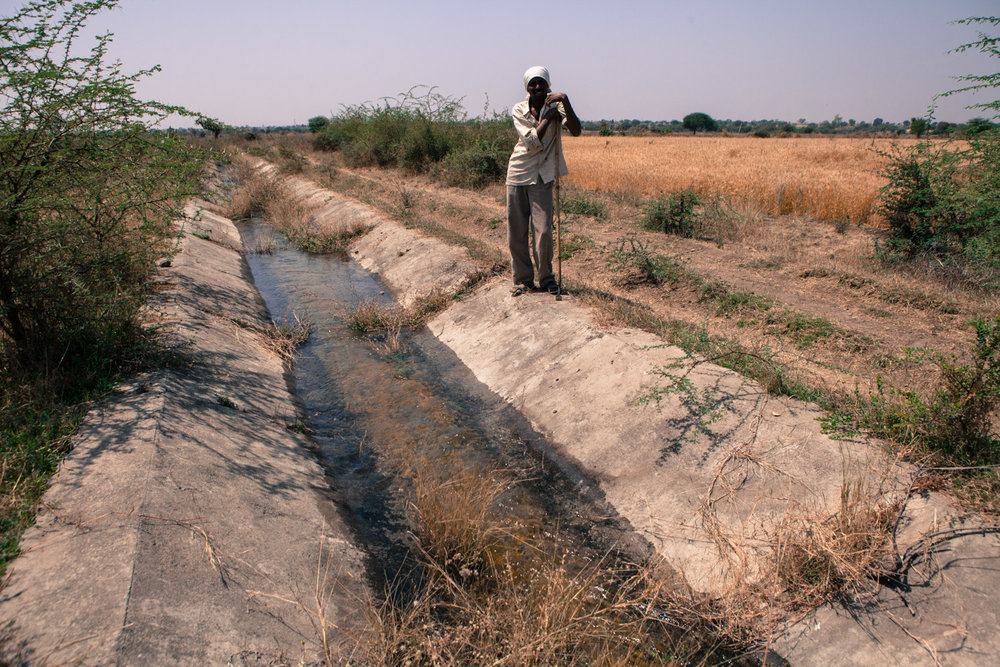 The tail end of irrigation canals of the Upper Wardha dam in Nimgawahan village provides a much needed lifeline allowing farmers to grow a second crop such as wheat.