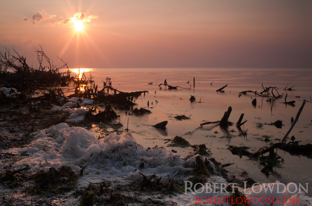 Foam. By: Robert Lowdon Algae pollution on Lake Manitoba, Canada