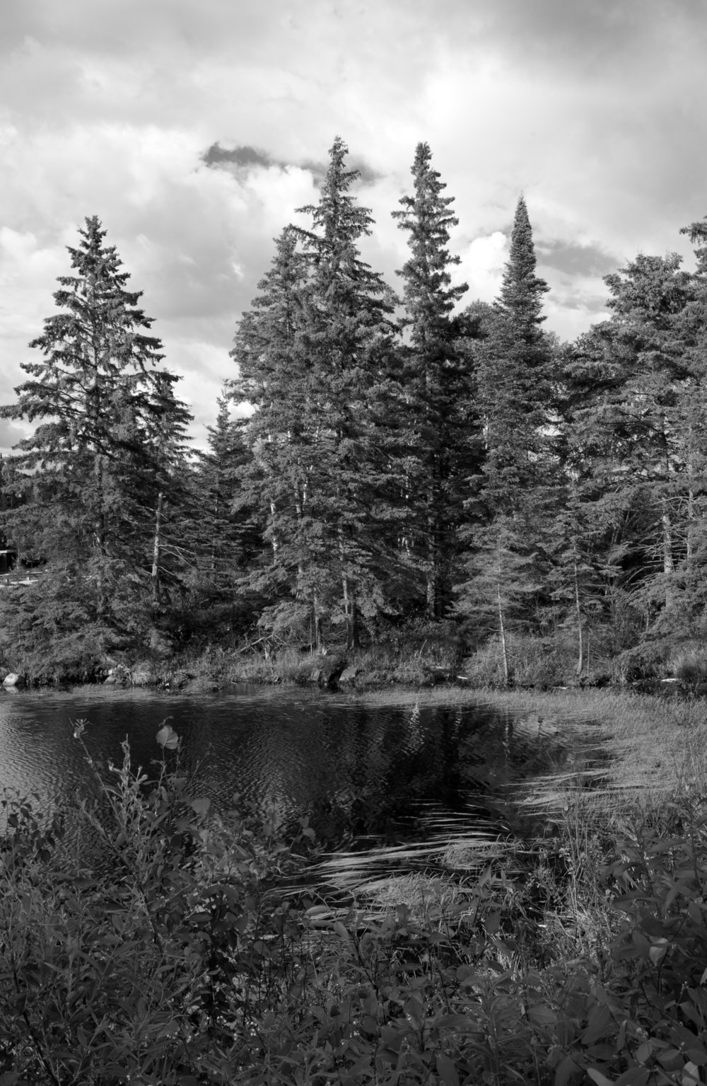 Spruce Water By: Robert Lowdon Small body of water in North Western Ontario