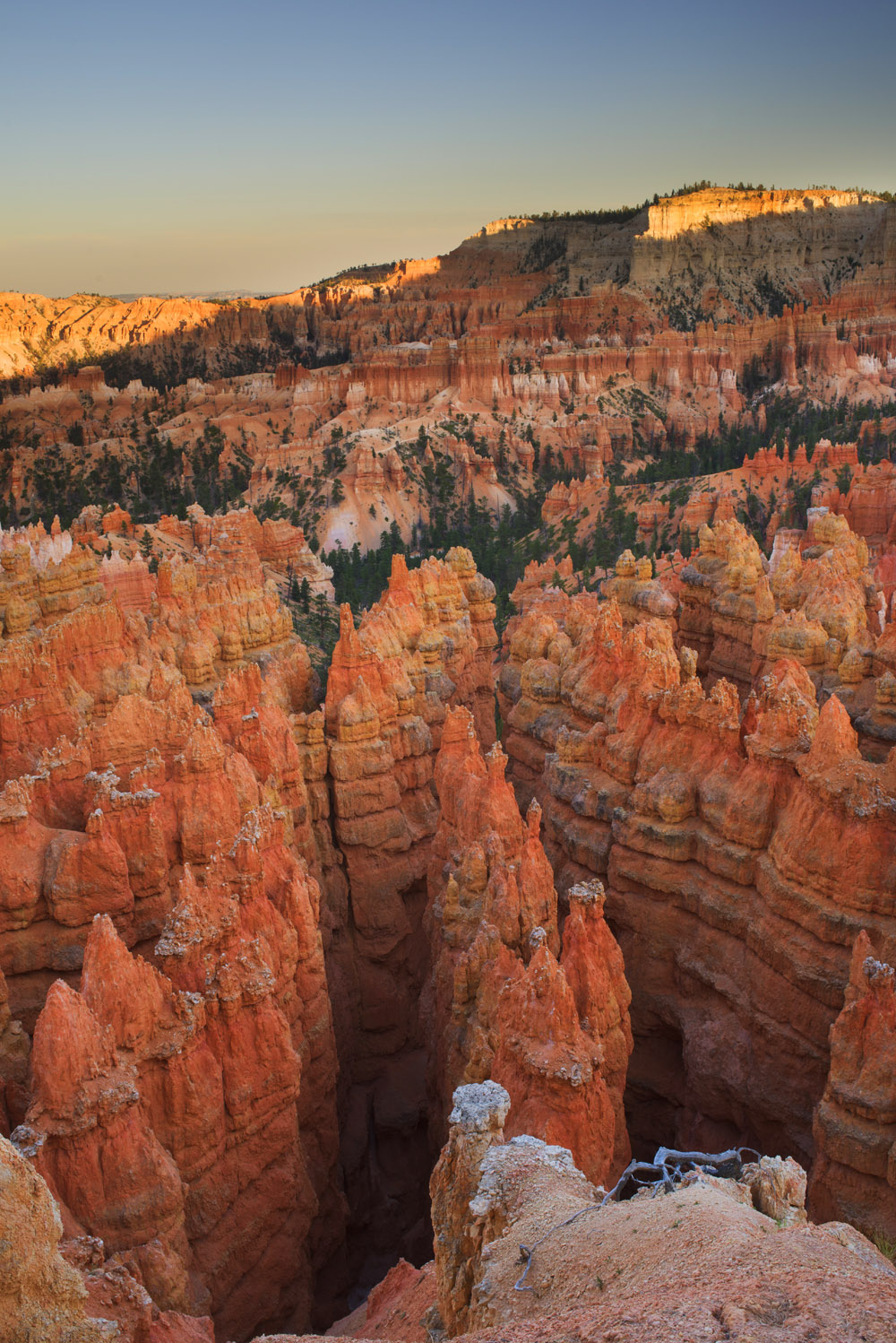 The unique rock formations of Bryce Canyon. © Robert Lowdon
