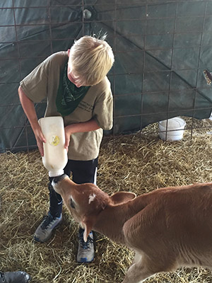Feeding a goat 300px w.jpg