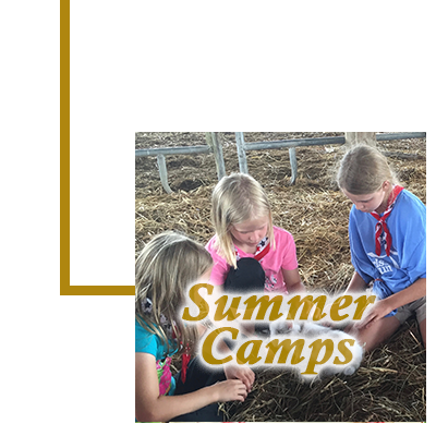 Sub-seasons Summer Camps 400x400.png