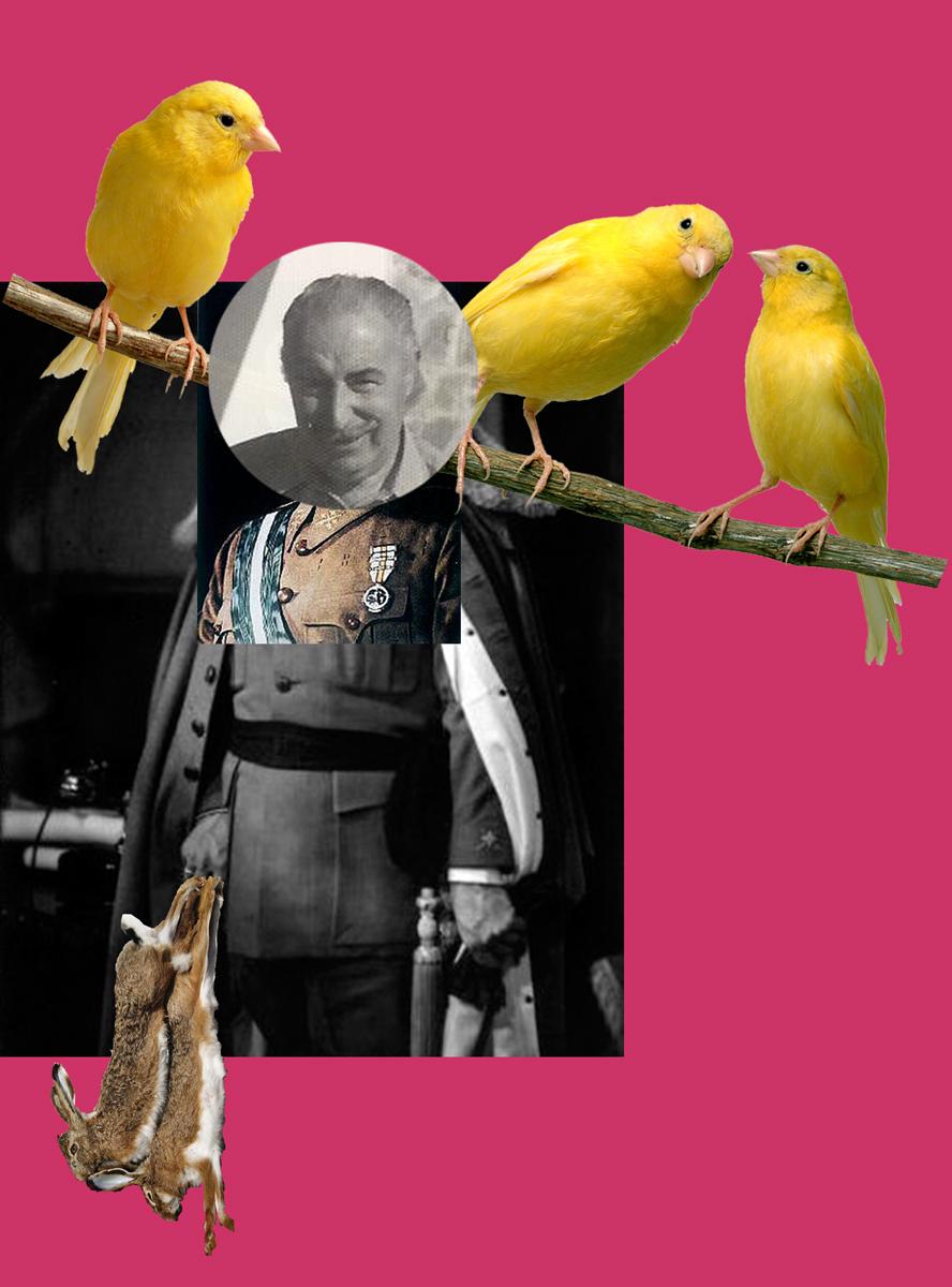 Birdy Face Or Abuelito Dime Tu.jpg