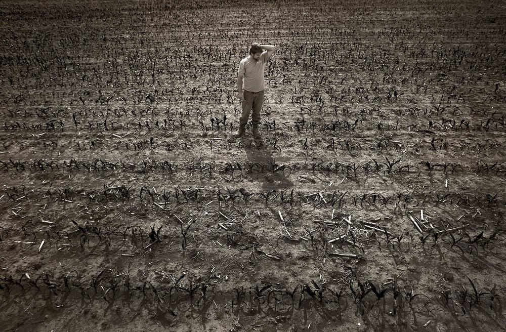 farmer-02.jpg