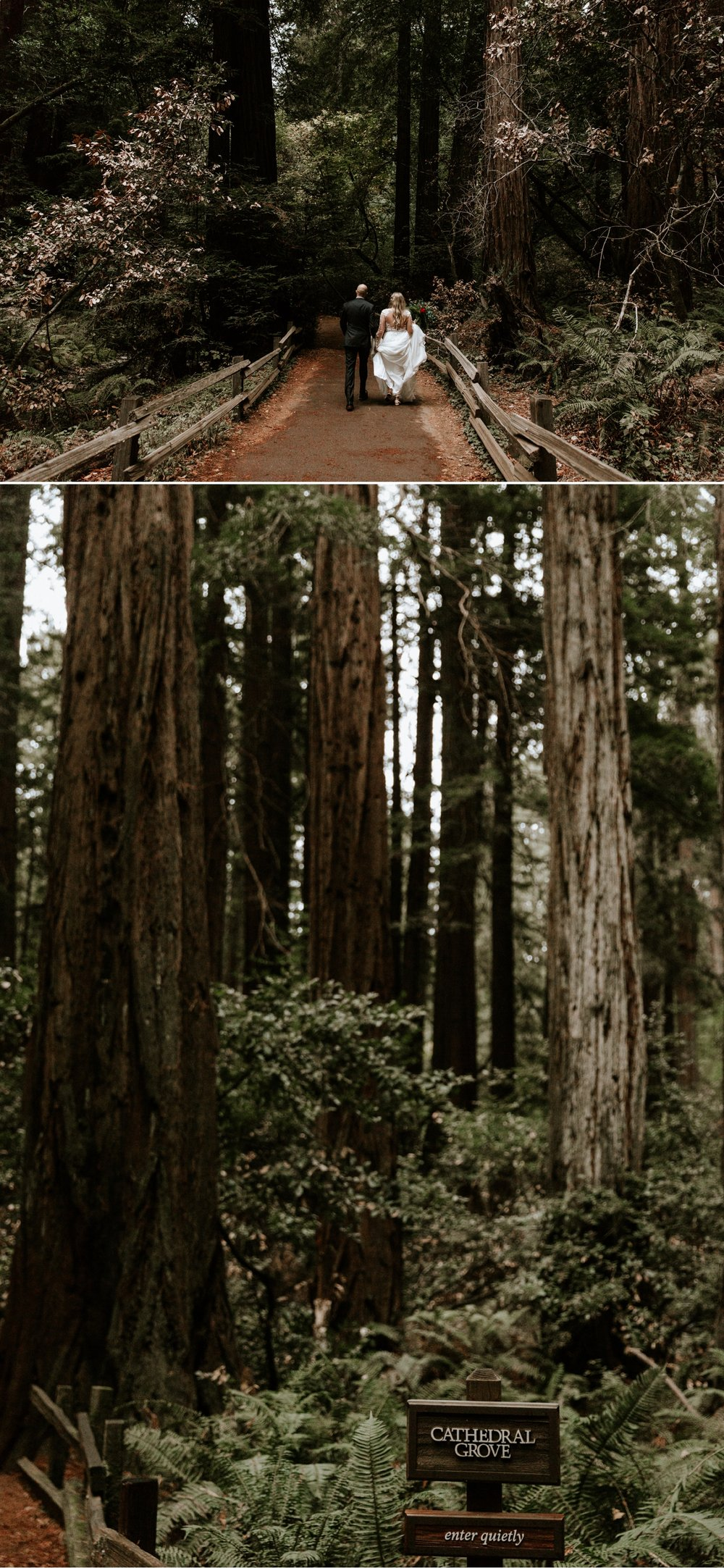 hannah-nick-intimate-muir-woods-wedding-18.jpg