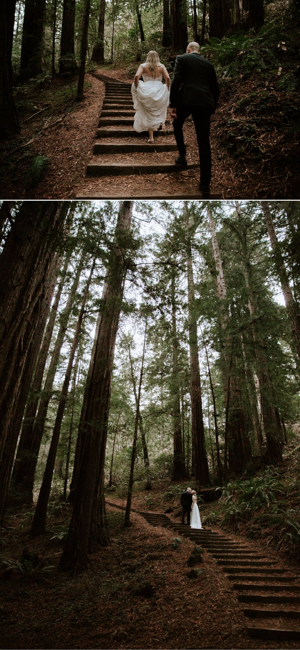 hannah-nick-intimate-muir-woods-wedding-31.jpg