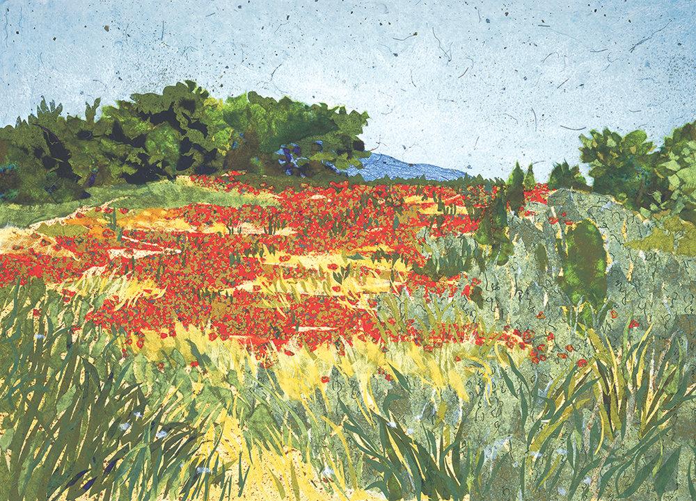 Poppy Field, Provence