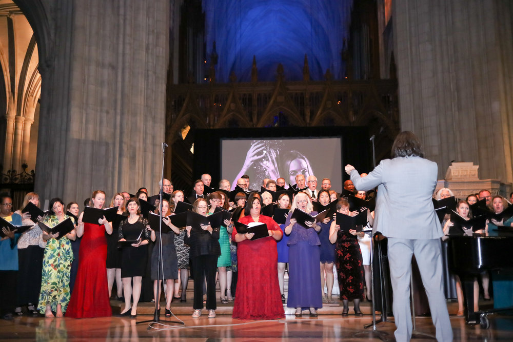 Photo © Tony Powell. 2017 Washington Chorus Ball. National Cathedral. May 2, 2017-264.JPG