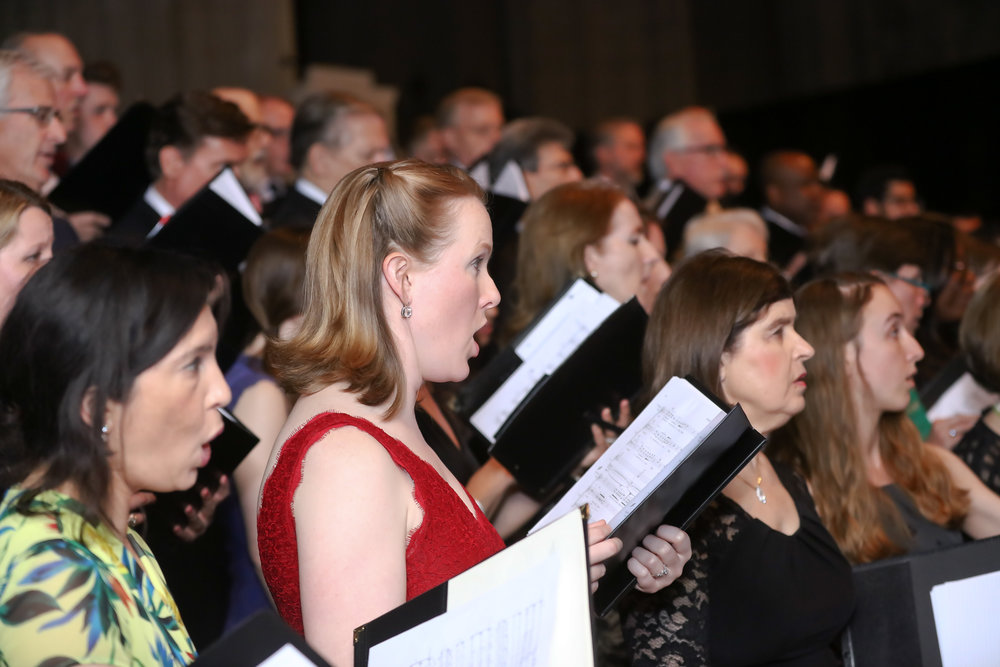 Photo © Tony Powell. 2017 Washington Chorus Ball. National Cathedral. May 2, 2017-265.JPG