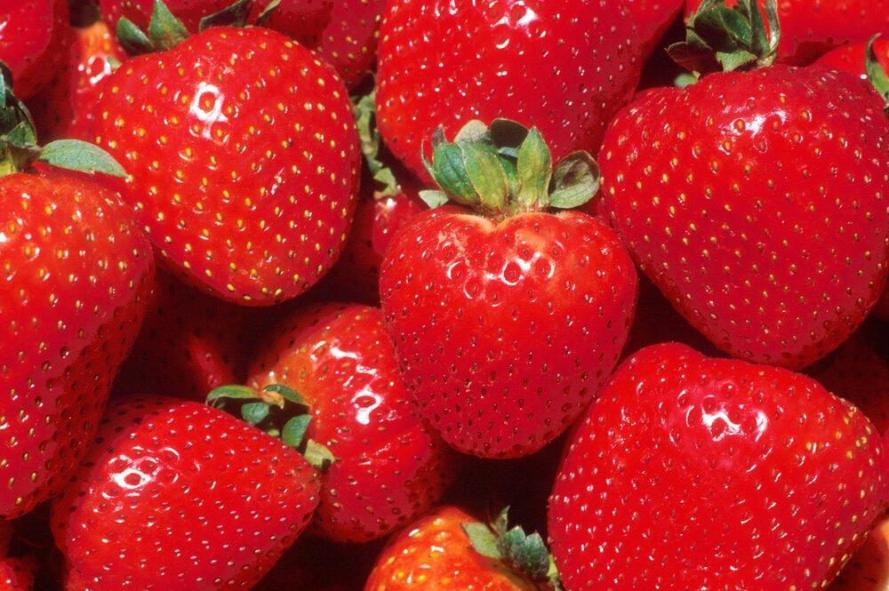 strawberry-321.jpg