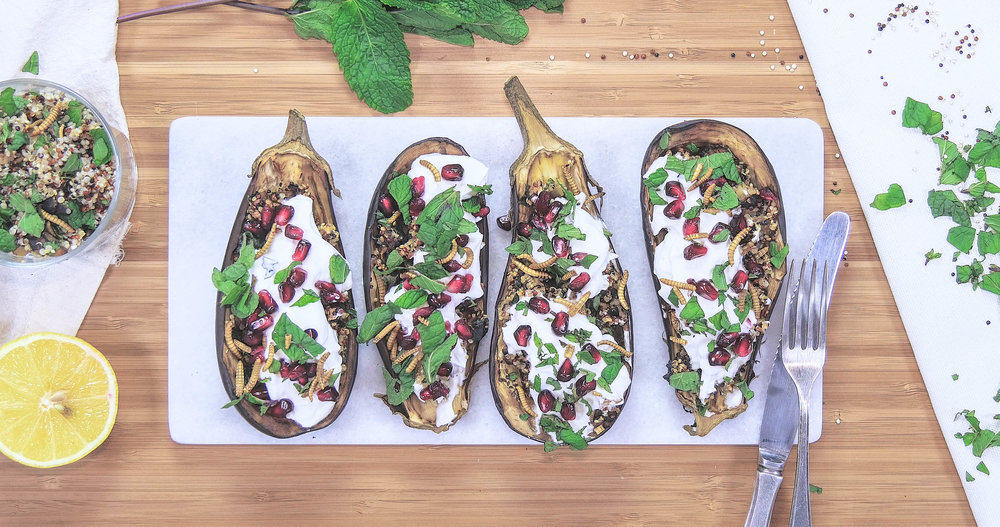 Aubergines with quinoa & mealworms
