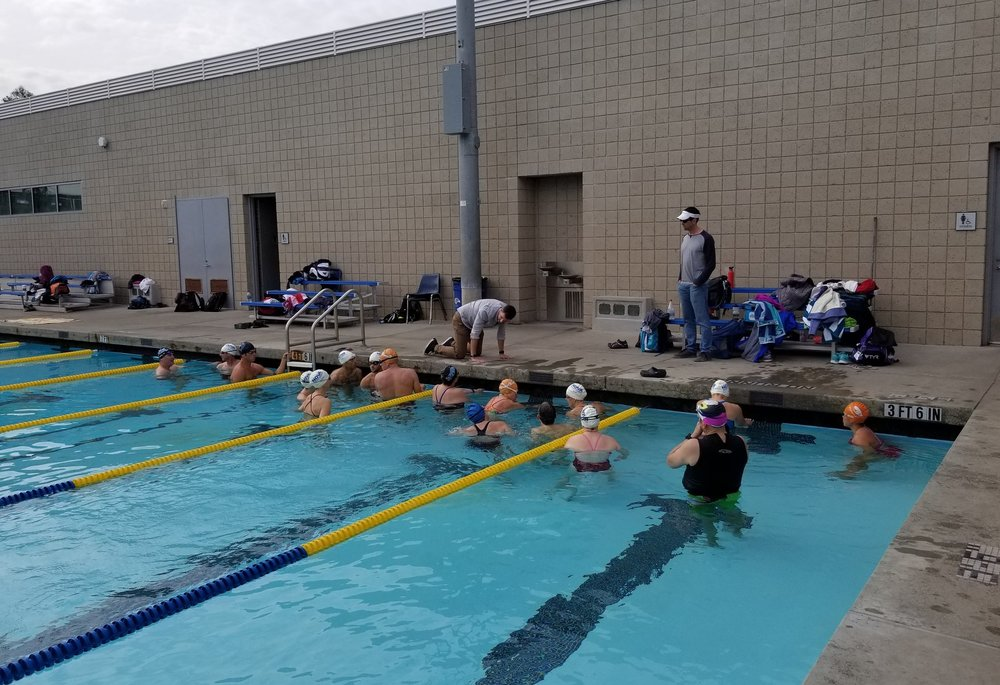 SwimBox Swim Lessons FBM Clinic