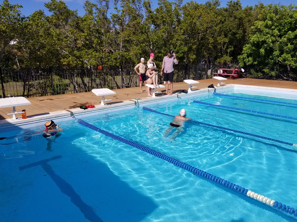 SwimBox Swim Lessons SwimBox Thoughts Swimming Blog