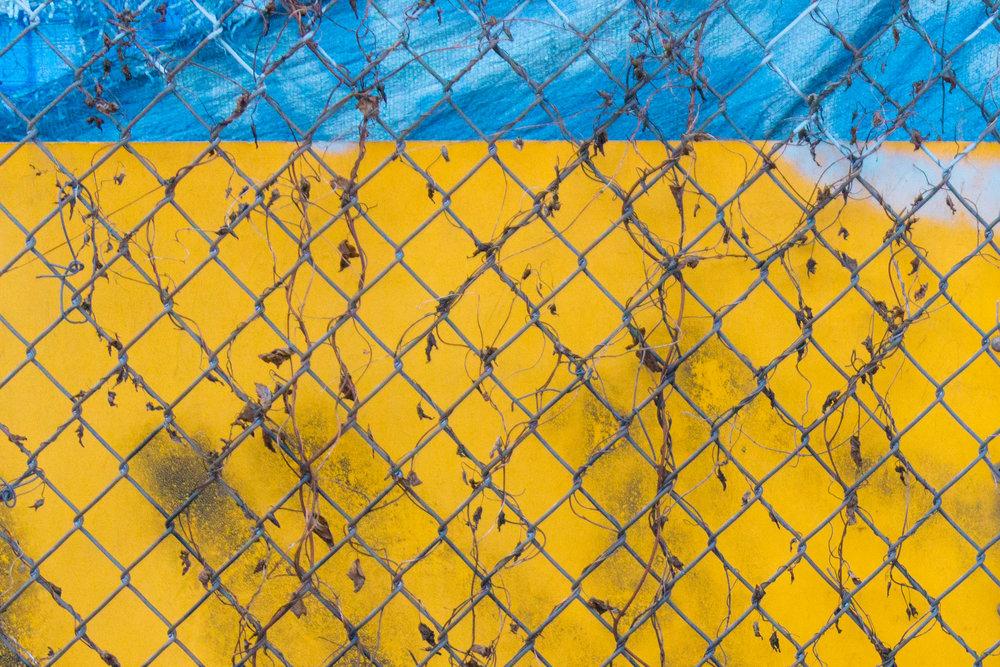 Fence , 2016  © Faysal Matin