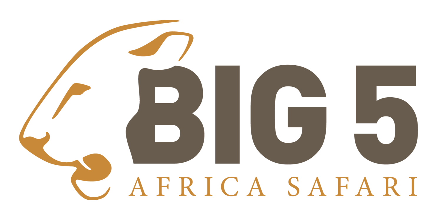 Big 5 Africa Safari