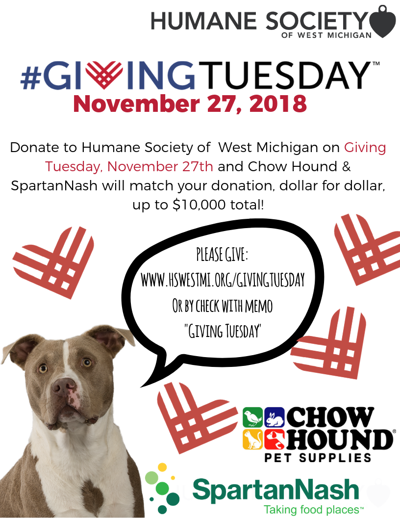 Giving Tuesday 2018.png