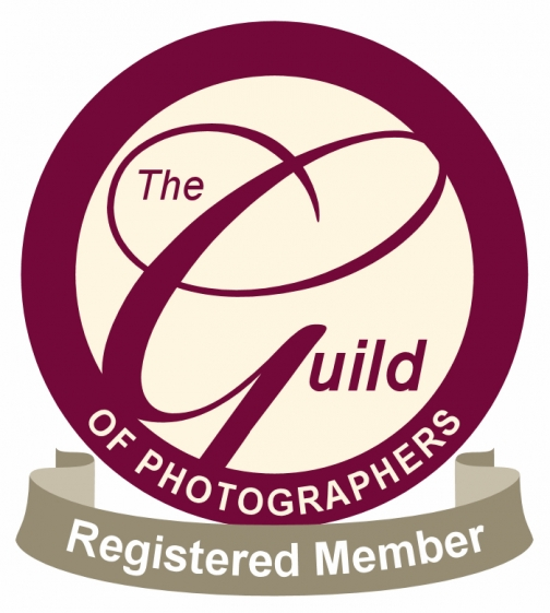 photographers-colour-registered(pp_w504_h561).jpg