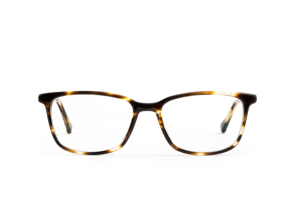 Farady Felix Gray glasses