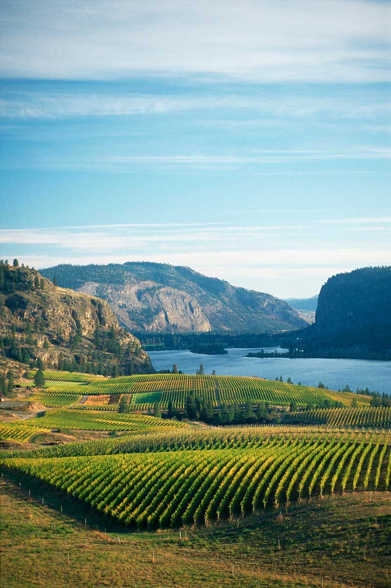 Okanagan-Falls-Image-Courtesty-of-BCWI-(4).jpg