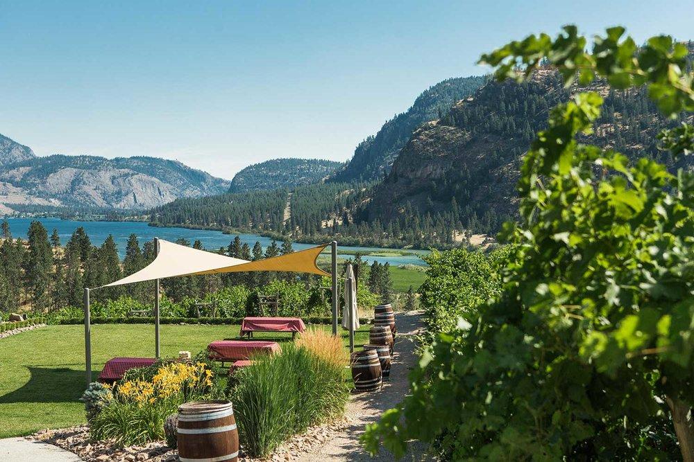 20170726_Okanagan-Falls-Winery-Association-1654.jpg