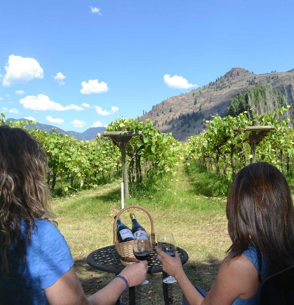Vineyard-Picnic-Ladies.jpg