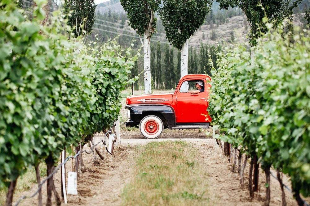 Unique BC Wineries - Learn More