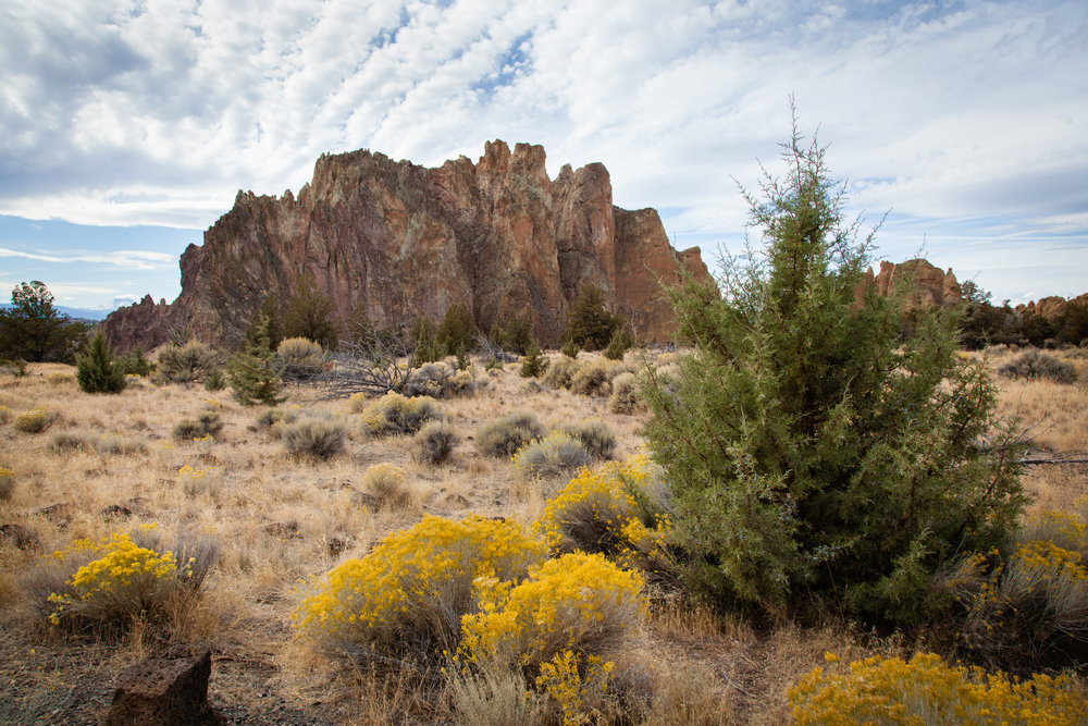 Smith Rock State Park - view from the parking lot.