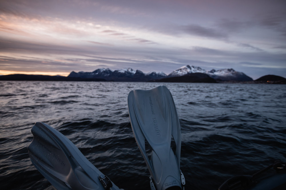 My fins and I enjoying a beautiful arctic sunset at the end of an incredible day.