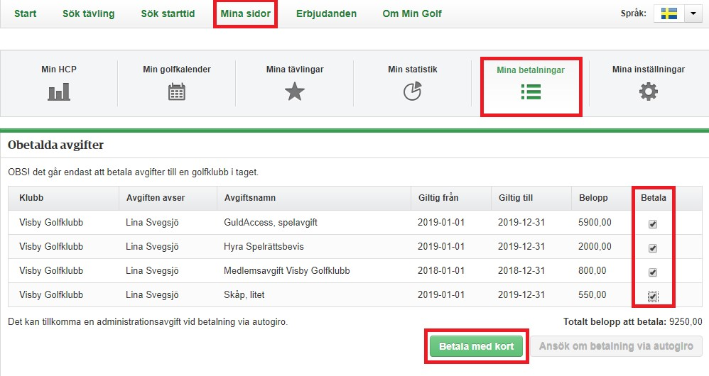 instruktion betalning online Visby Gk.jpg