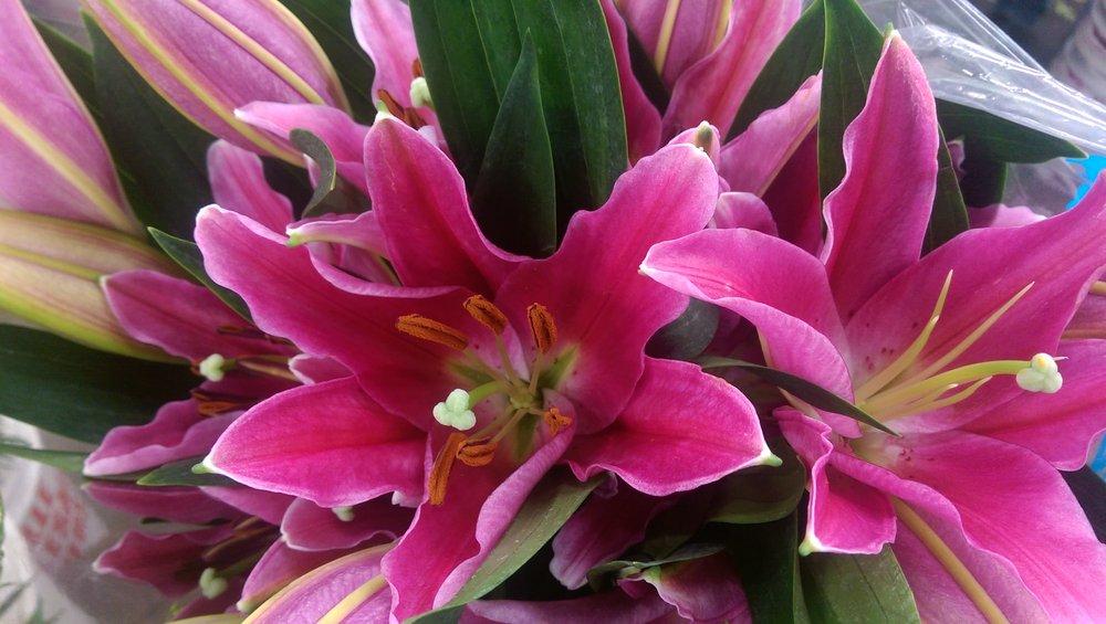 Lilies  Year round