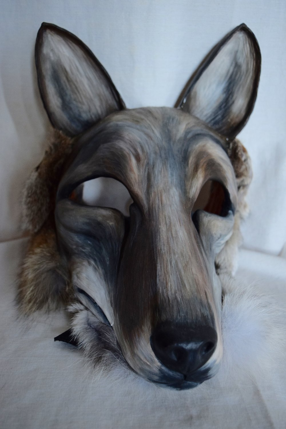 Coyote, 2015. Clay, roadkill coyote hide, acrylic